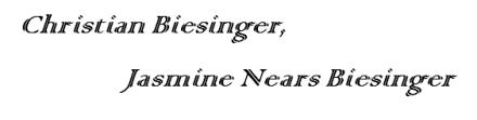Biesinger Logo 1